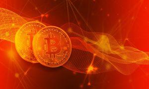 das Börsen bei Bitcoin Profit